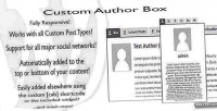 Author custom box