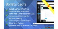 Cache borlabs plugin caching wordpress