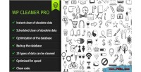 Cleaner wp pro