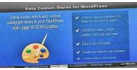 Custom easy wordpress for styles