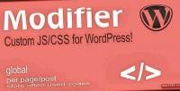 Custom css & js wordpress for plugin custom