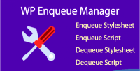 Enqueue wp manager