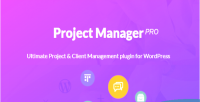 Manager project pro