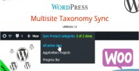 Multisite wordpress taxonomy sync