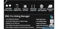 Pro bwl voting manager