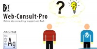 Web consult pro consulting faq & support
