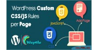 Wordpress custom css javascript page per rules