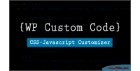 Wp custom code another script customizer site your for