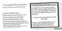 Wp textmorph editor page on