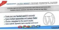 Filter taxonomies widget