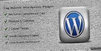 Master tag wordpress plugin
