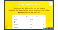 Widget extended wordpress for options