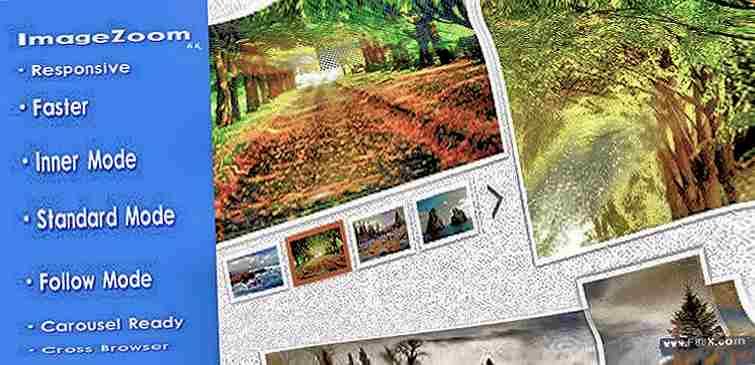 Responsive imagezoom jquery plugin zoom image javascript images media