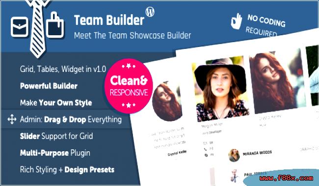 meet the team page wordpress download